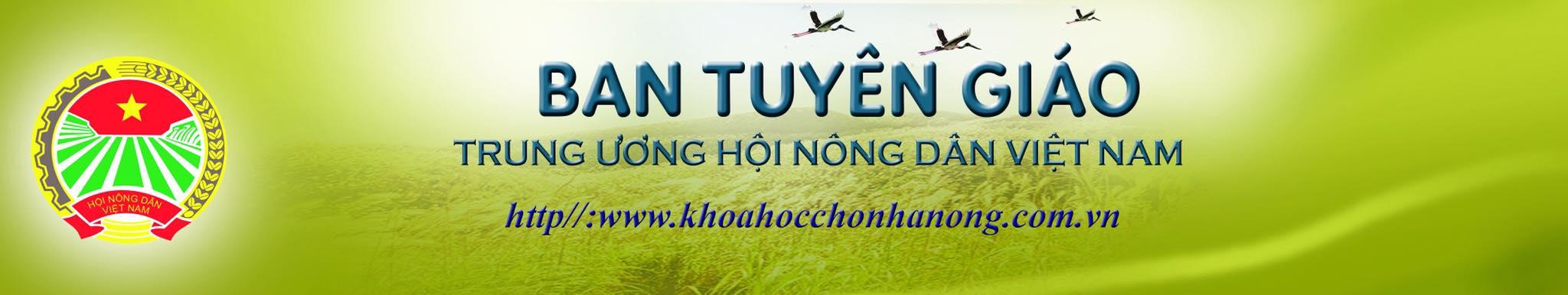 Những nông dân sản xuất kinh doanh giỏi tiêu biểu ở Nghệ An